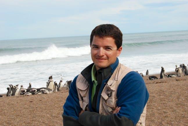 Pablo Borboroglu with Magellanic penguins, Argentina