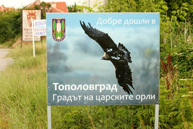 Imperial eagle sign