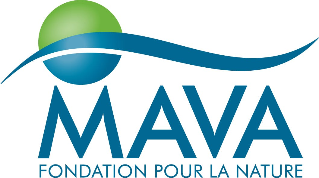 Image for MAVA Foundation